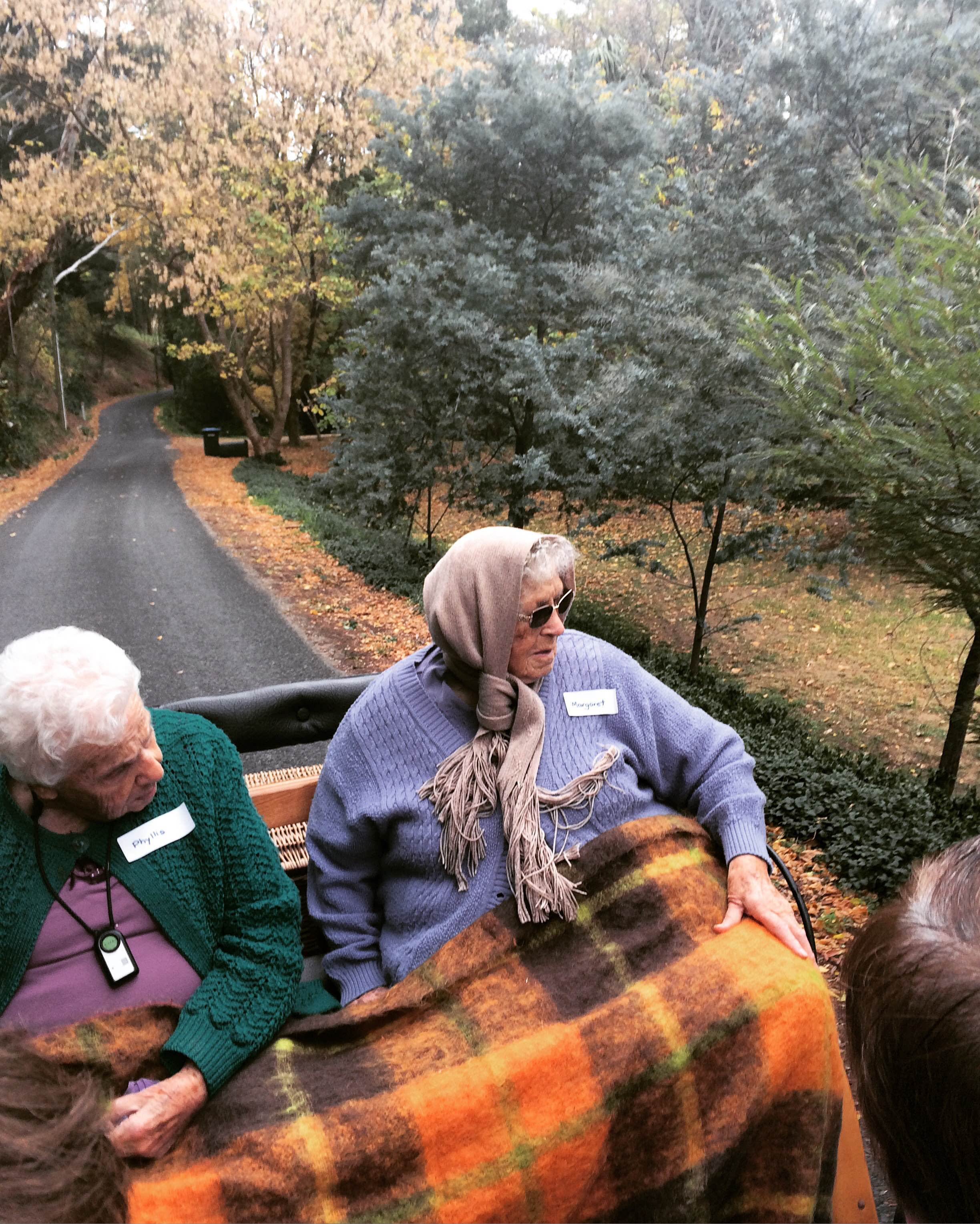 Elderly ladies enjoying carriage ride through montacute valley