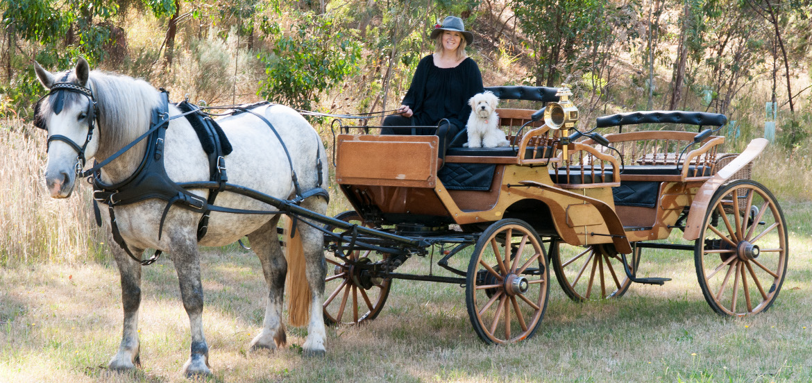 classic carriage drives adelaide
