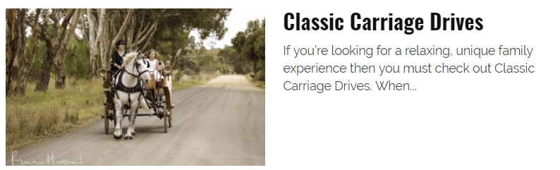 Kids in Adelaide review Classic Carriage Drives.