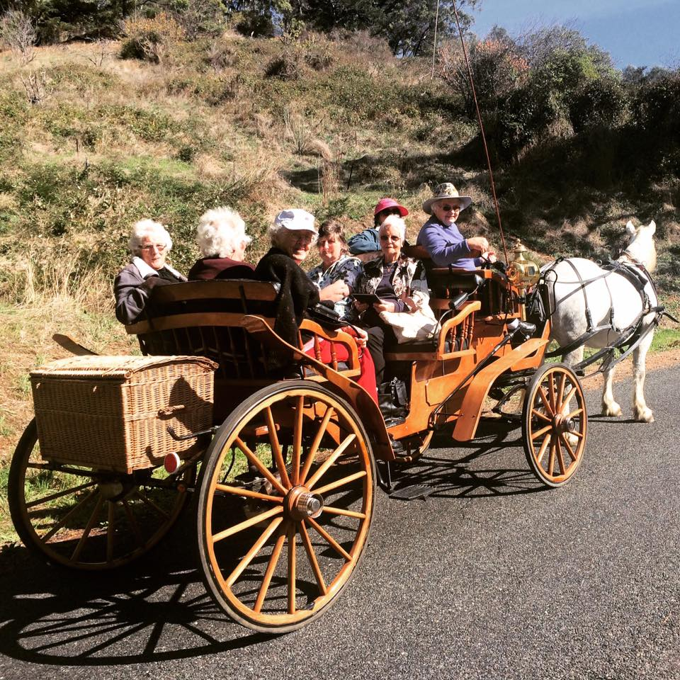 Ladies on open carriage ride with montana through adelaide hills